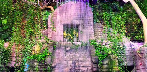 cleveland metroparks zoo lights rainforest wedding cleveland metroparks zoo