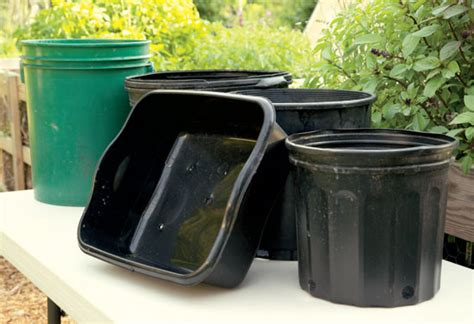 containers for gardening cheap cheap gardening containers how to find and use them
