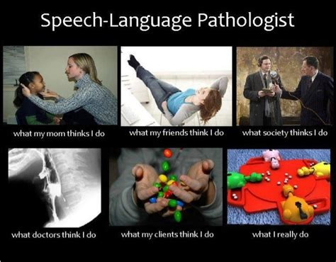 Slp Memes - 157 best images about slp humor on pinterest humor schools and teaching