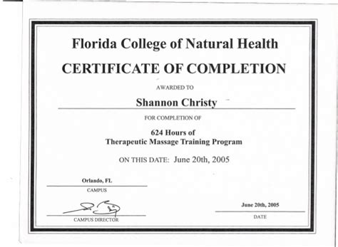 28 sle course completion certificate template sle