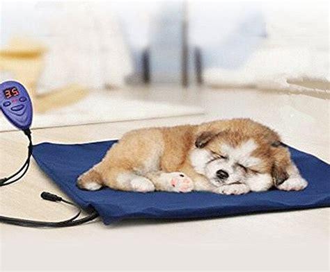 igloo dog house heating pad compare price to dog house heating pad dreamboracay com