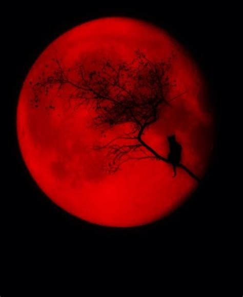 blood moon tattoo 1000 images about sleeve possibilities on