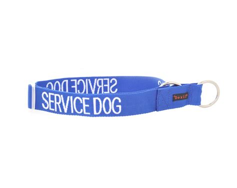 service collar service lead and collar friendly collars