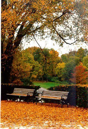 cincinnati color changing colors in cincinnati parks cincinnati parks