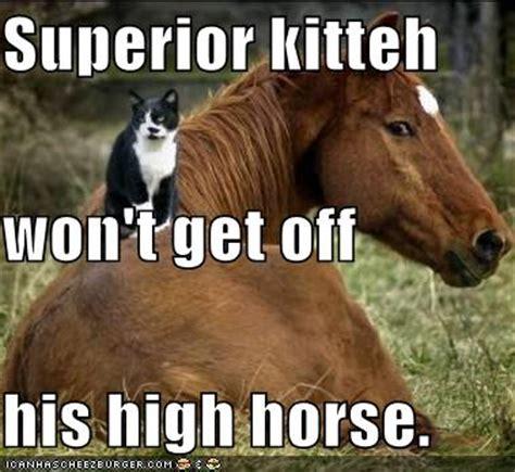 High Horse Meme - february 2009 natalia antonova