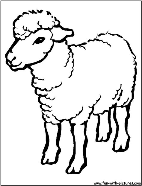 coloring book page drawing sheep outline drawing coloring page sheep cartoon images