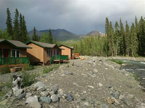 mckinley creekside cabins hotels denali national park