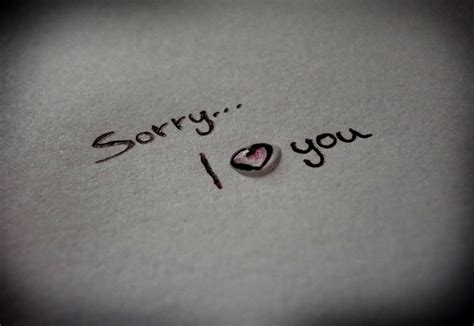 images of love sorry im sorry i love you quotes quotesgram