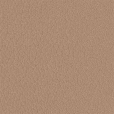 Family Room phoenix 15gs warm taupe natuzzi leather editions coverings
