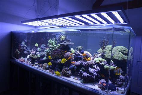 Pompa Aquarium 2m faq reponses aux questions frequentes sur les eclairages