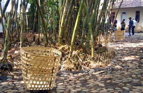 Keranjang Bambu bambu tanaman kaya manfaat yang masih dipandang