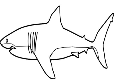 megamouth shark coloring page shark open mouth coloring pages hammerhead grig3 org