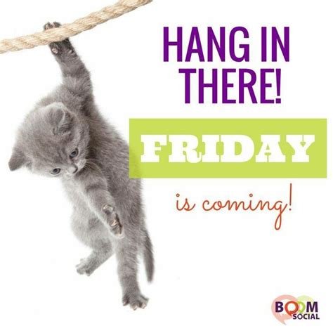 Friday Hanging Up by 578 Best Daily Greetings Images On Bonjour