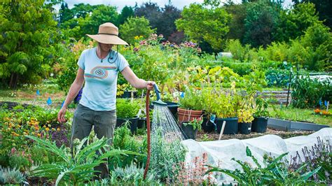 master gardener series sustainable landscape design