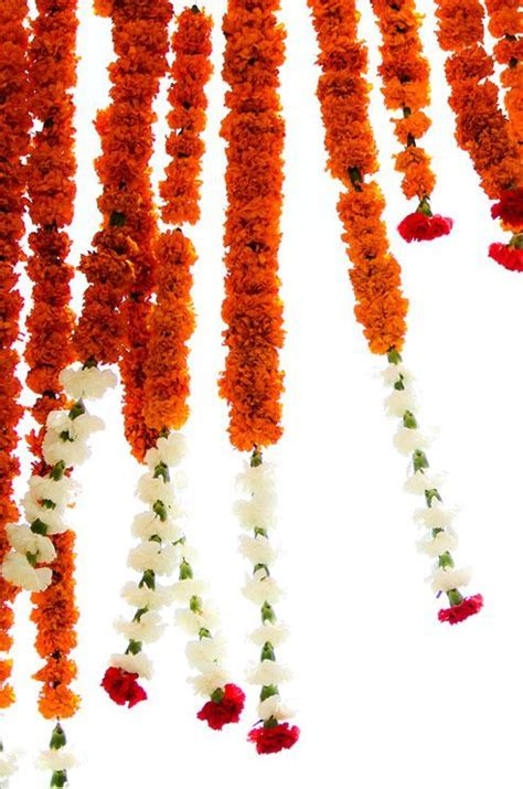 Marigold flowers are traditionally used at an Indian