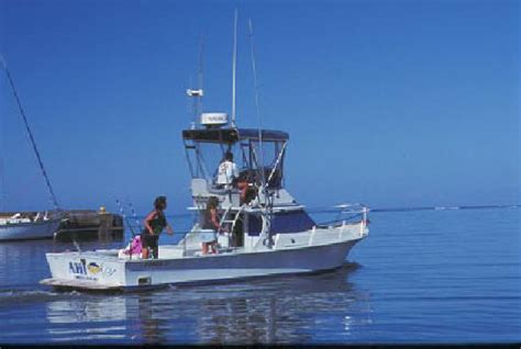 deep sea fishing boats for sale in san diego fishing boat for sale deep sea fishing boat for sale in