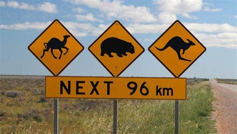 printable australian road signs orange street signs street sign wall