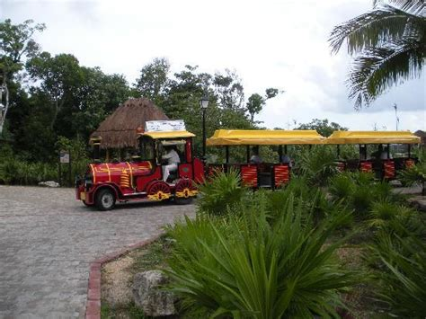 Hotel Transportation by Hotel Transportation On The Grounds Picture Of Grand