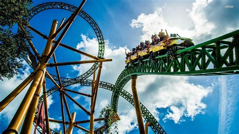 theme park definition wikipedia roller coaster wallpapers wallpaper cave