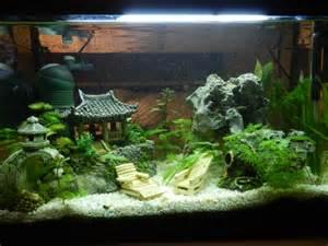 d 233 cor japonais pour aquarium encombrement place