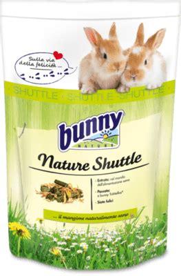 coniglietti nani alimentazione alimentazione conigli da compagnia benvenuti su onlyforpets