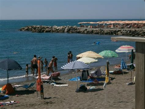 hotel il gabbiano marina di cecina antipasto picture of cecina province of livorno