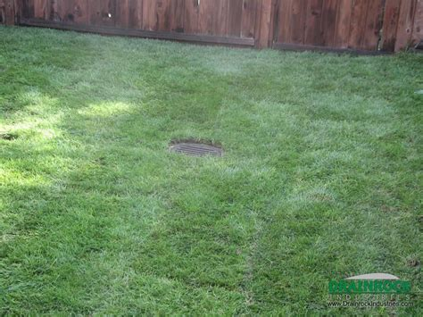 how to fix a wet backyard how to fix a wet backyard 28 images wet yard solving