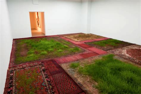 rug installation martin roth makes indoor lawns by growing real grass on aging rugs inhabitat green