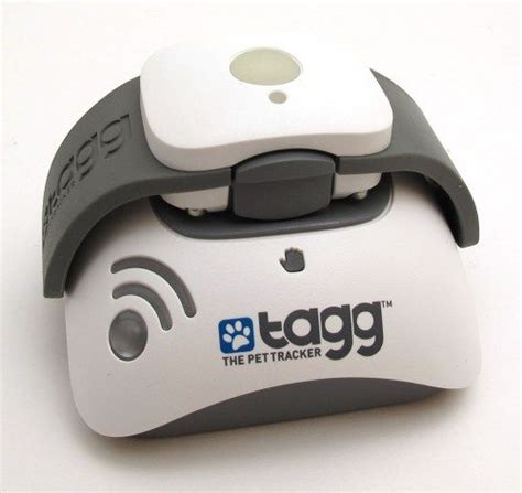 tagg tracker tagg the pet tracker review the gadgeteer