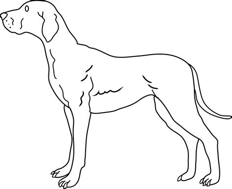black and white coloring pages of dogs coloring page free clip