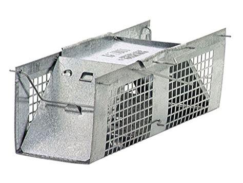 gabbie per uccelli usate vendita batteria gabbie uccelli usato vedi tutte i 30 prezzi