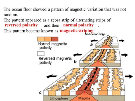 pattern of magnetic polarity reversal so how did the theory of plate tectonics develop ppt