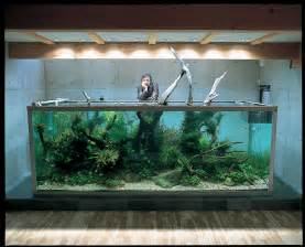 takashi amano zen and the of the aquascape the