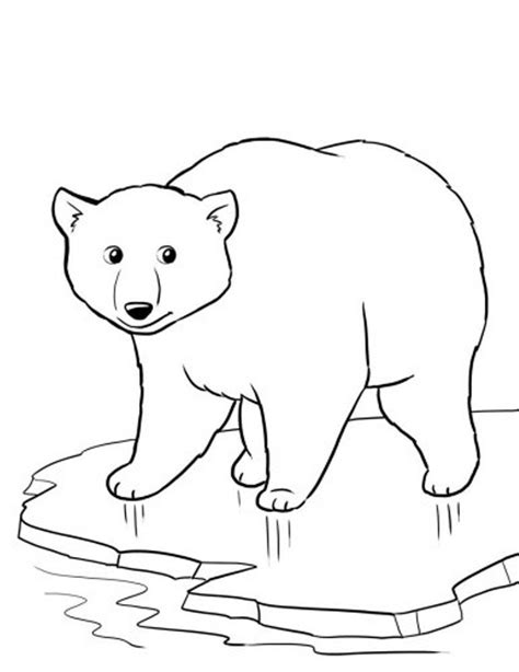 winter bear coloring page coloring pages winter polar bear animal coloring pages