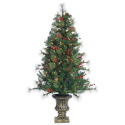 buy 4 5 foot pre lit potted alberta spruce christmas tree