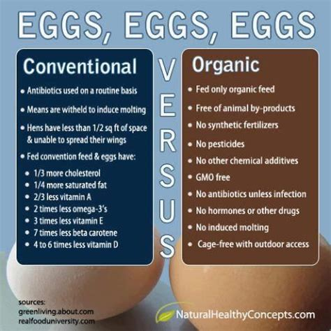 the health benefits of organic eggs 17 best ideas about organic eggs on pinterest paleo