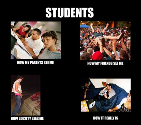 College Students Meme - 115 best images about college memes on pinterest ryan