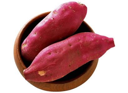 Batatas Keripik Pangsit Ubi Ungu gambar ubi jalar ipomoea batatas gambar di rebanas rebanas