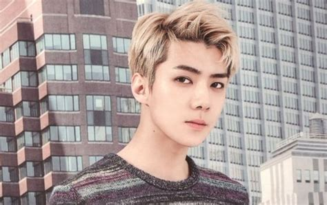 film baru sehun exo gambar photo exo lotte duty free 2017 kpopmap global