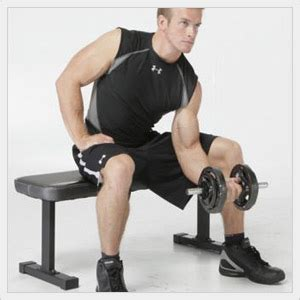 apex flat bench apex produces a portable and heavy duty discount flat weight bench