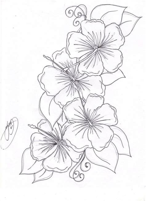 coloring pages of flowers with names beautiful flower coloring pages free hibiscus flower