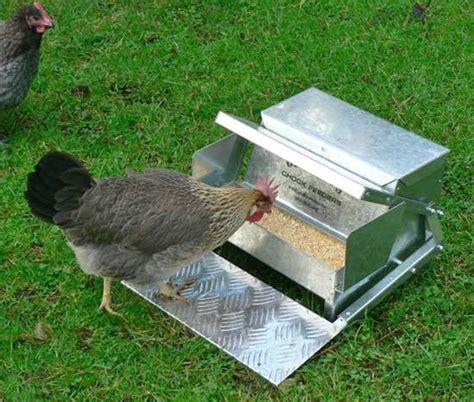 Rat Proof Chicken Feeder chicken feeder rodent proof chickens