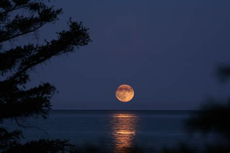 harvest moon shoot for the moon with these lunar wallpapers android central