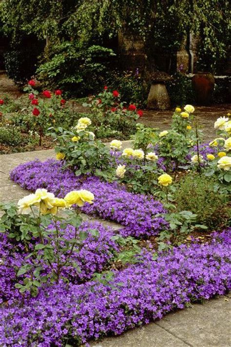 Purple Flower Garden Purple Country Garden Beautiful Flower Gardens