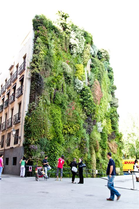 Vertical Garden Madrid Photos From Our Two Day Madrid Adventure