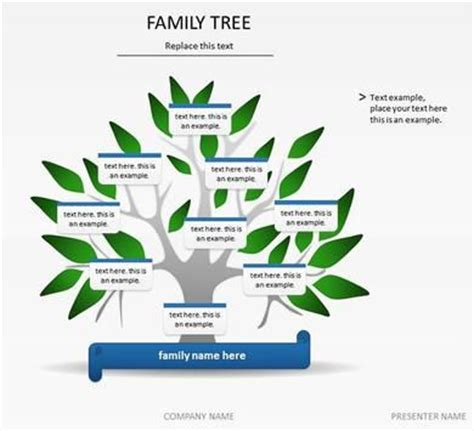 free family tree templates for word 25 unique family tree template word ideas on