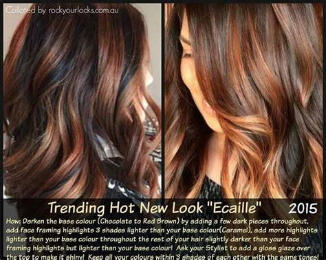 how to do ecaille hair color best 25 ecaille hair ideas on pinterest ecaille hair