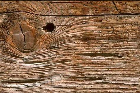 imagen de fondo de madera foto gratis fondos gratis para paginas web fondos web gratis