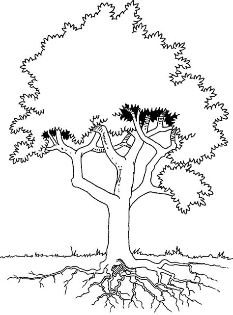 tree stem coloring page coloring tree with roots picture