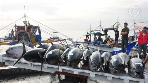 fishing boat business philippines 2 ph tuna firms thai union to open cannery in png